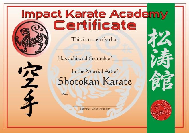 Karate Certificates Templates Free